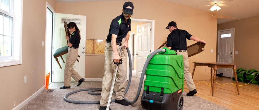 Westlake, CA cleaning services